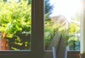 glazed window options